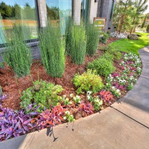 colorful landscaping sidewalk design project
