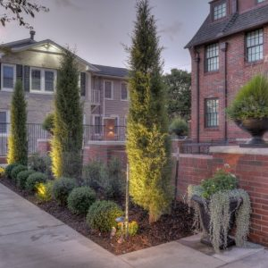 nelson landscaping lighting project