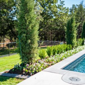 Jones Oklahoma pool landscaping by Nelson Landscaping service
