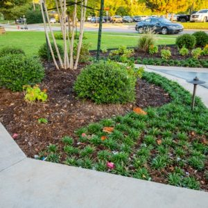 residential landscaping project in Edmond OK