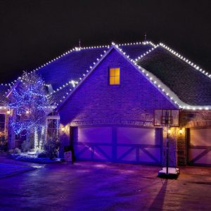 nelson landscaping christmas lighting project