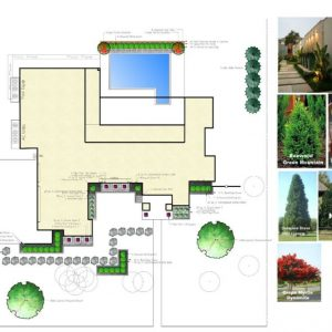 Landscaping Design by Nelson Landscaping for Street of Dreams Matteson Homes