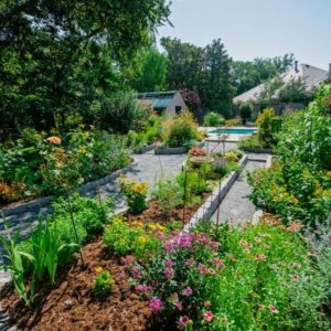 Backyard Garden Landscaping & Walkway