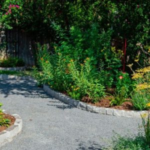 Backyard Landscaping with Stone Edging