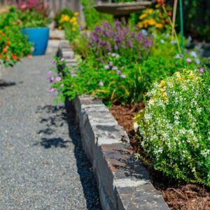 Backyard Garden Landscaping with Stone Edging