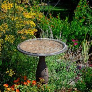 Backyard Flower Bed with Bird Bath