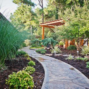 Backyard Walkway & Landscaping