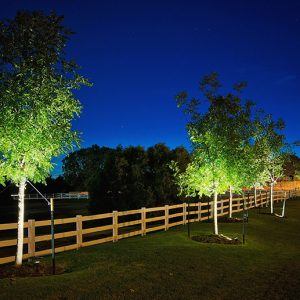 Belmont Farms Neighborhood Entrance with Landscape Lighting