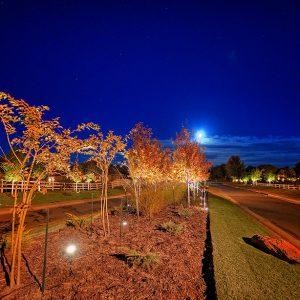 Neighborhood Entrance Landscape Lighting