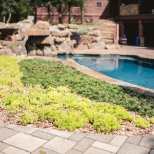 Pool and paver landscaping