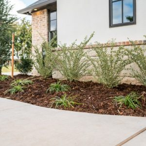 sidewalk residential landscape design by Nelson Landscaping