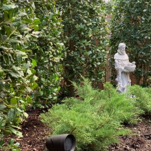 Backyard Landscaping with statue by Nelson Landscaping in OKC