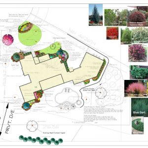 Nelson Landscaping residential landscaping plans