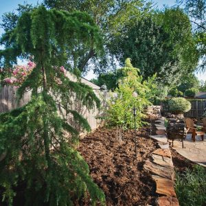 nelson landscaping backyard hardscaping project