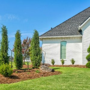 Front Yard Landscaping with Tall Bushes