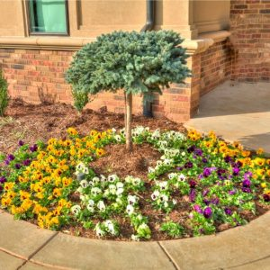 Front Yard Flower Bed classic home design landscaping