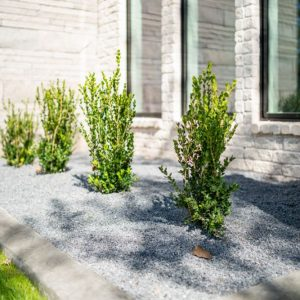 Matteson Homes Flower Bed Landscaping with Hardscaping