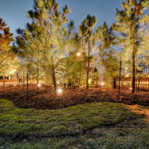 Neighborhood Community Front Entrance Roundabout Landscaping Lighting